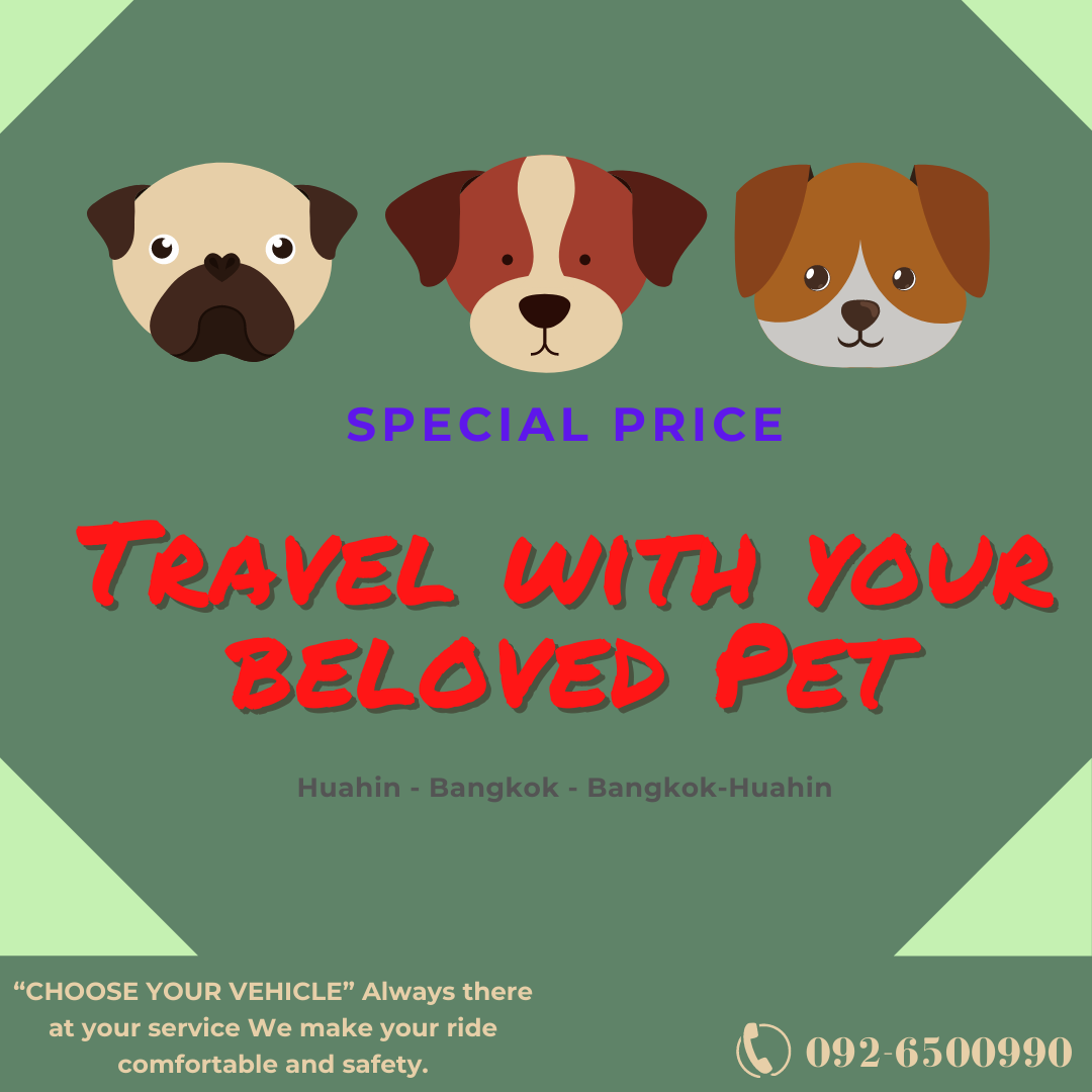 Traveling with your beloved Pets